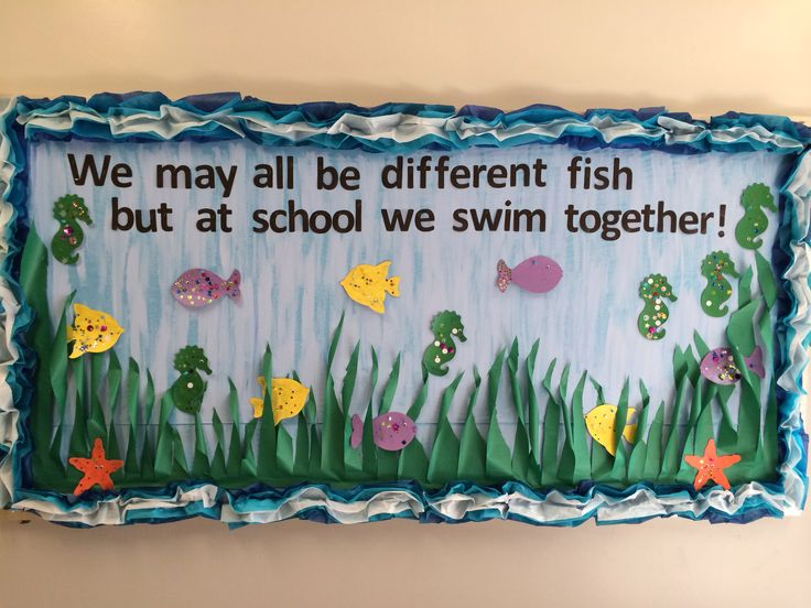 """""""We may all be different fish but at school we swim together!"""" Prek bulletin board for swimming/water study!"""