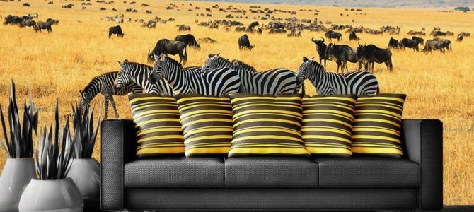 Fototapety z kolekcji safari