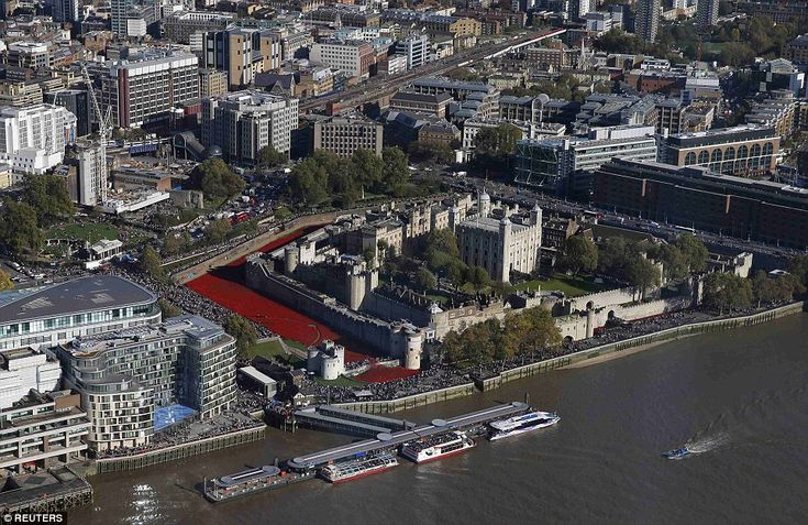Monumental: When the last ceramic poppy is planted on November 11 there will be a staggeri...