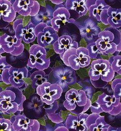Benartex Kanvas Bloom Pansies Violet
