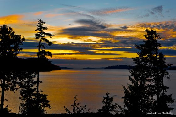 Sunset @ Telegraph Cove, BC. One of my all time fav places.