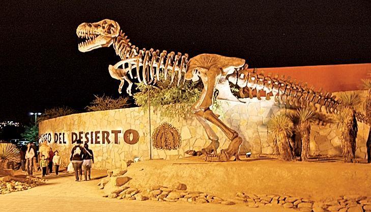 El Museo del Desierto en Saltillo, Coahuila, está dedicado a contar la historia de uno de los ecosistemas más importantes del país, así como la forma en que los mexicanos de esa época fueron adaptándose al ambiente. #saltillo #museodeldesierto #viajes