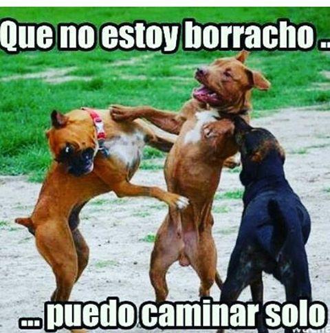 Muchos de nuestros usuarios a esta hora!  #viernes #clasedepea #rumba #panas #valencia #maracay #caracas #barquisimeto #coro #falcon #anzoategui #margarita #maracaibo #zulia #siguenos #silla_e_mimbre #humor #chiste #memes #risas #vzla #venezuela #merida #sancristobal #likes #20likes #likeforlike #like4like #carabobo #f4f