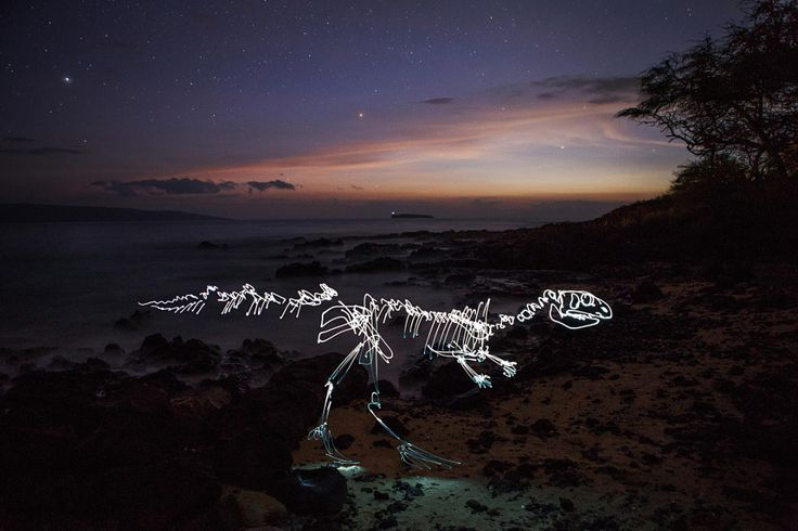Some of the most creative light painting photos i've ever seen!! Light fossils by Dan Pearson