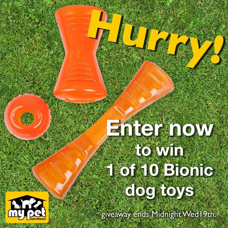 Enter NOW to win 1 of 10 BIONIC dog toys.  | They are super-strong and ultra-durable. | Great for heavy chewers. | Enter here - https://www.facebook.com/mypetwarehouse?sk=app_1418210811744035 | Ens Wed 19th at Midnight | #dogs #dogtoys #win #contest #competition #Australia #Bionic #MPW