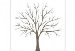 Image issue du site Web http://scrat.hellocoton.fr/img/medium/l-arbre-d-or-de-votre-mariage-1407001.png