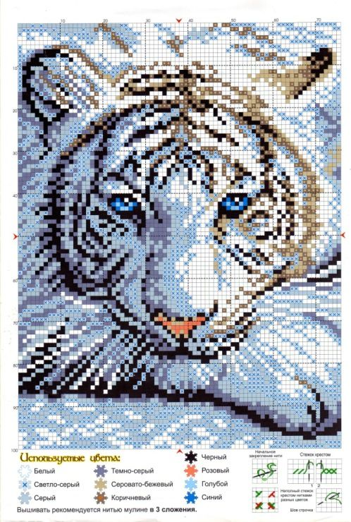 Cross-stitch White Tiger...    Gallery.ru / Фото #1 - 616 - Milka35