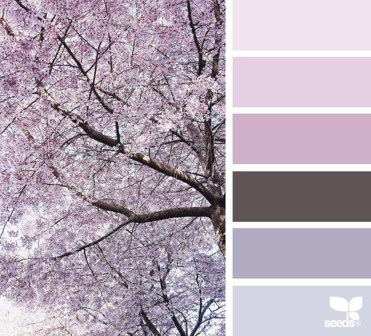 { color nature } image via: @mylamoments  #palette #colorpalette #pallet #colour #colourpalette #design #seeds #designseeds #seedscolor