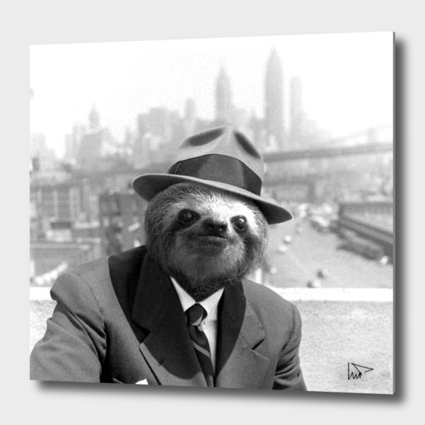 Discover «Sloth in New York», Exclusive Edition Aluminum Print by Luigi Tarini - From $75 - Curioos