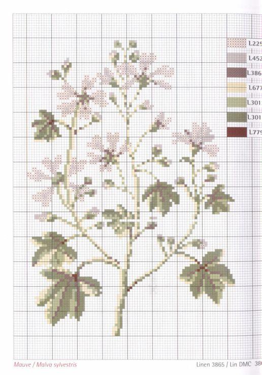 Gallery.ru / Фото #1 - Herbarium_DMC - 777m