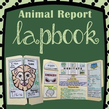 Alternatives to animal testing essay
