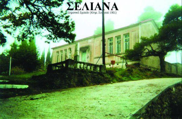 Seliana