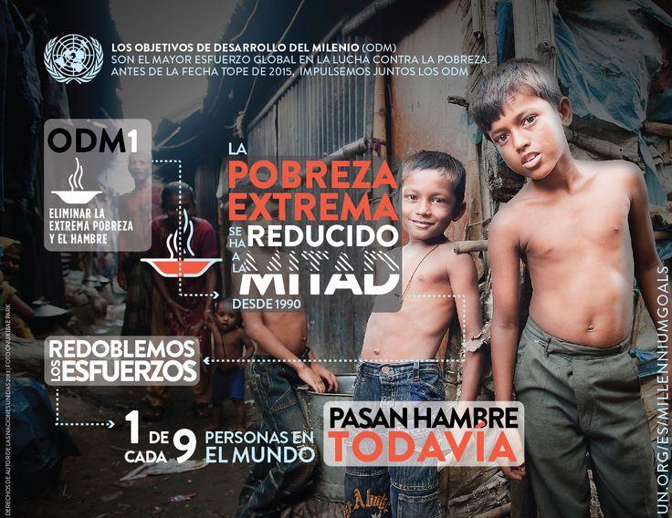 Infografía de los Objetivos de Desarrollo del Milenio (ODM) 1