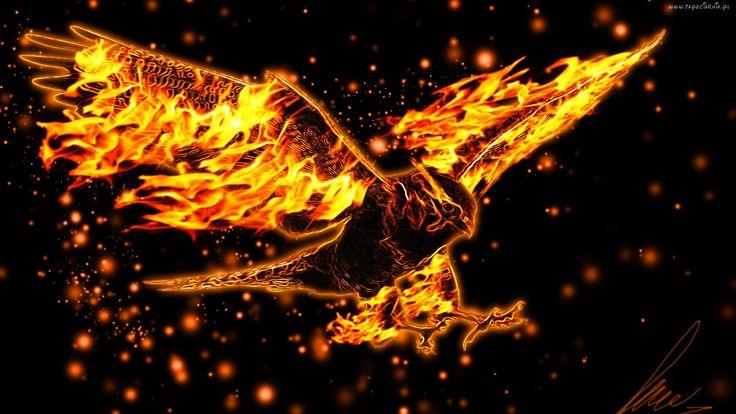 Orzeł, Ogień, Grafika