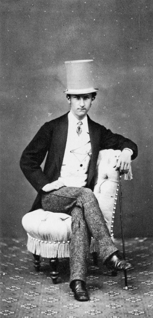 Young gentleman - Alinari