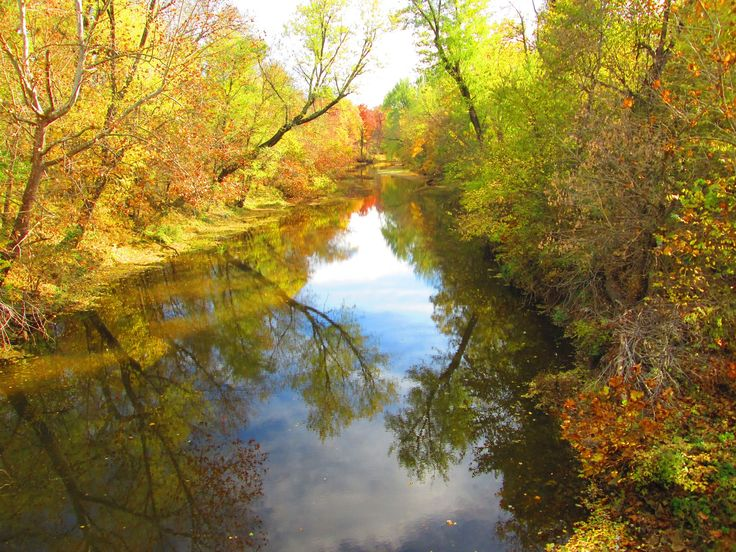 Lindley Creek in the Fall www.lindleycreek.com