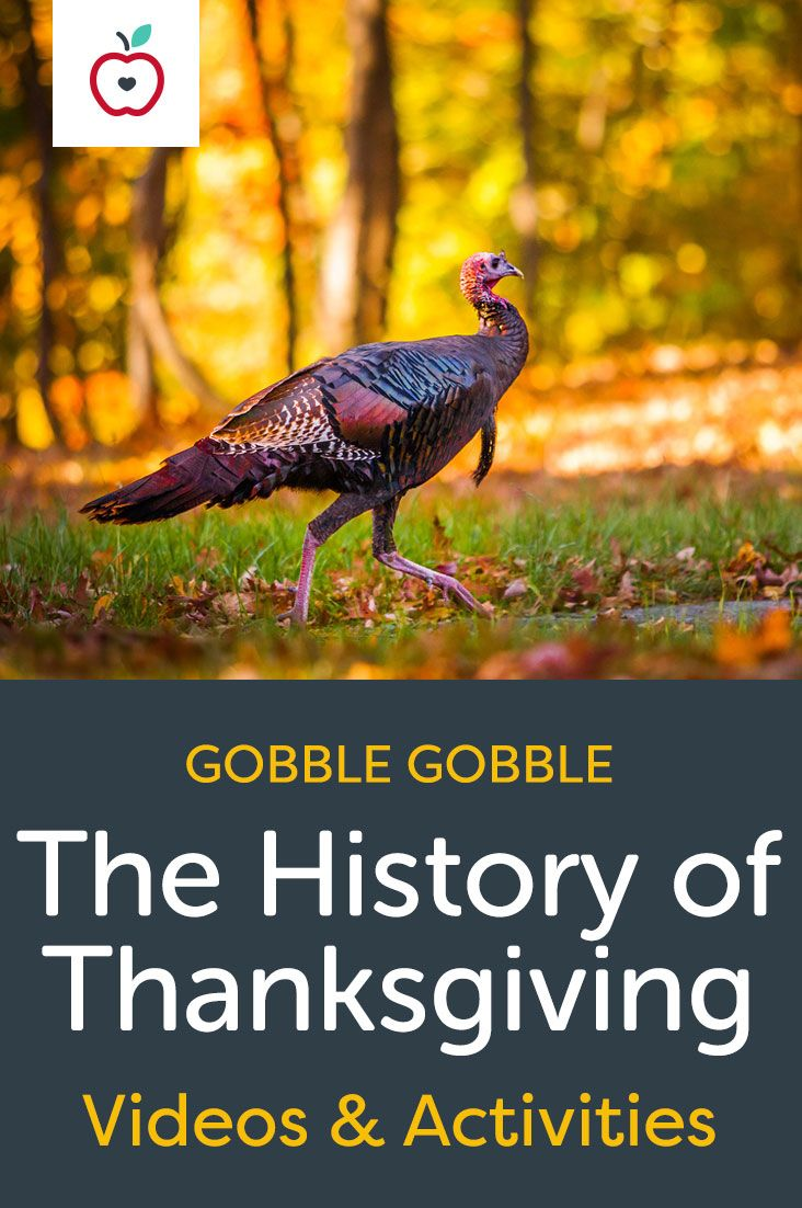 Learn how Thanksgiving became a national holiday. Each educational video on the history of Thanksgiving is paired with three extension activities to use in your classroom. Grades K-12