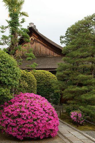 myoshinji 120505-2@kyoto