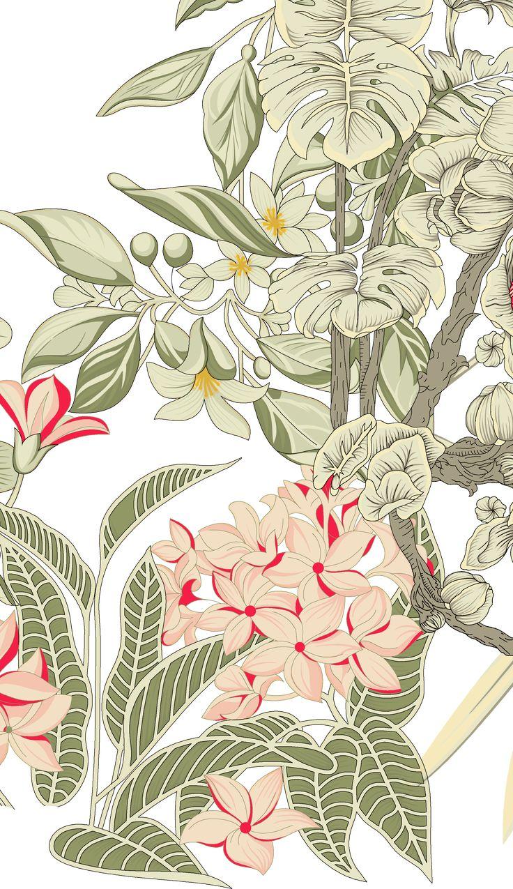 Pin by Zunaira bakhtawar on layouts in 2020 Botanical