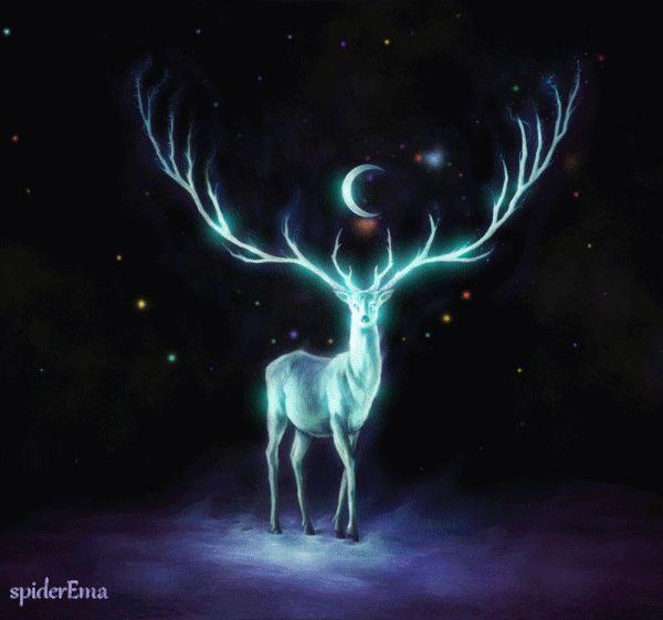 Full Cold Moon Blessings! Cherokee Billie Spiritual Advisor