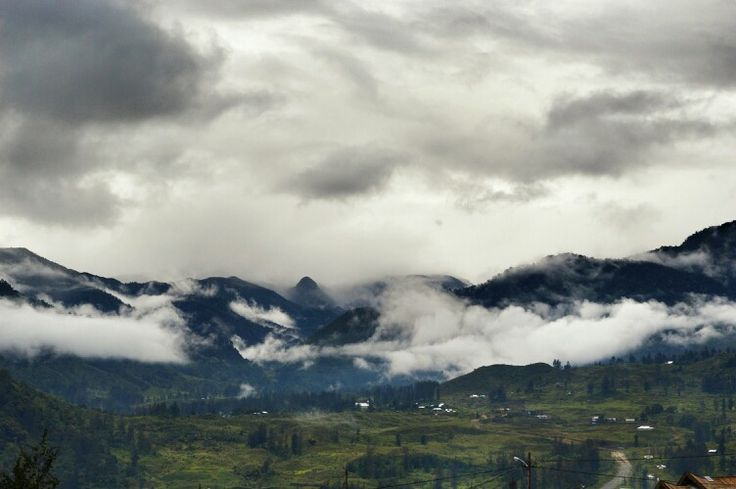 Mist @Ilaga, Puncak Regency, Papua