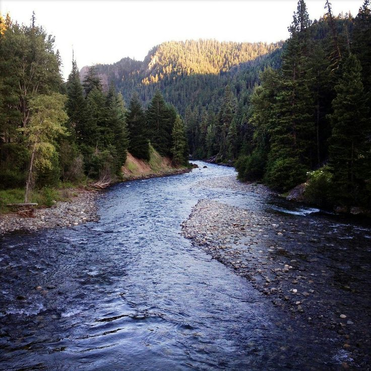 Looks like my favourite stream in Alberta