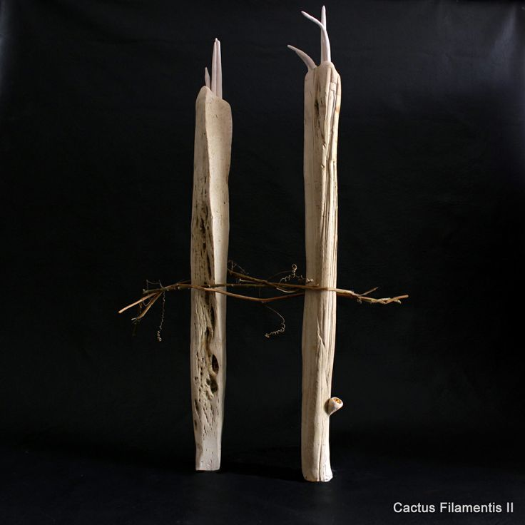 Cactus filamentis. Cerámica, Cristina del Castillo