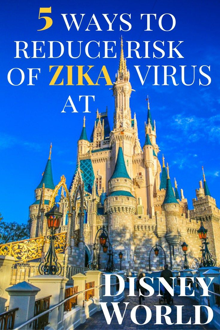 Disney World and Zika Virus: Ways to reduce risk for those who get bitten