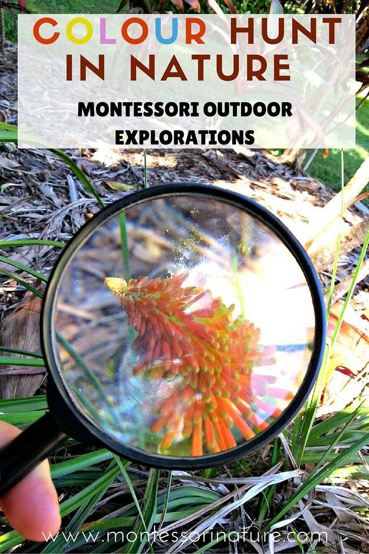 Colour Hunt In Nature | Montessori Inspired Activities in Nature | Homeschooling | Preschooler | Montessori Nature Blog | Nature Walk