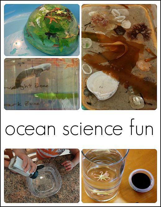 preschool ocean theme science 1