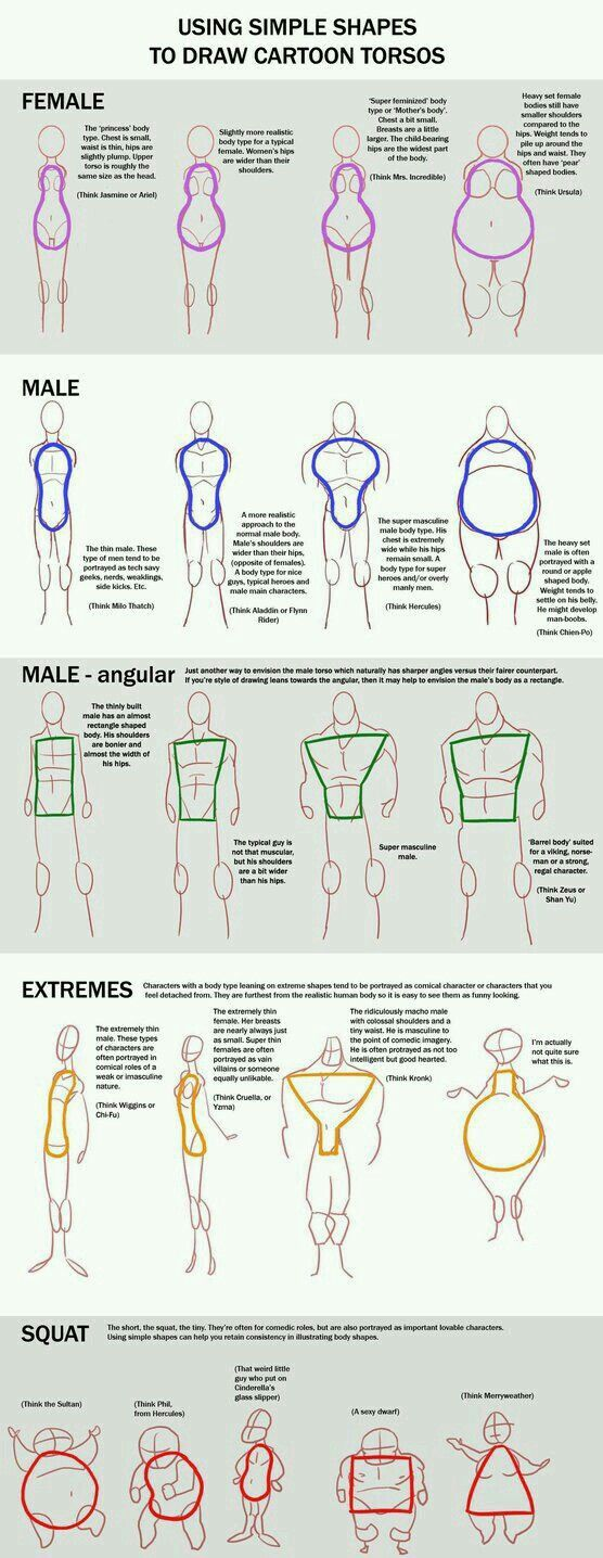 The study of cartoon body figures