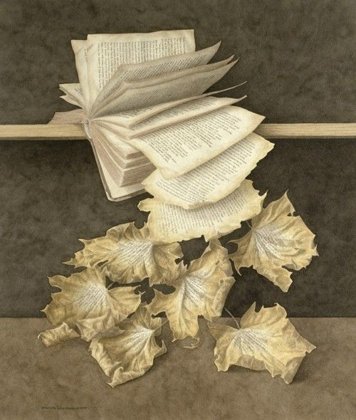 Book pages falling & turning into autumn leaves