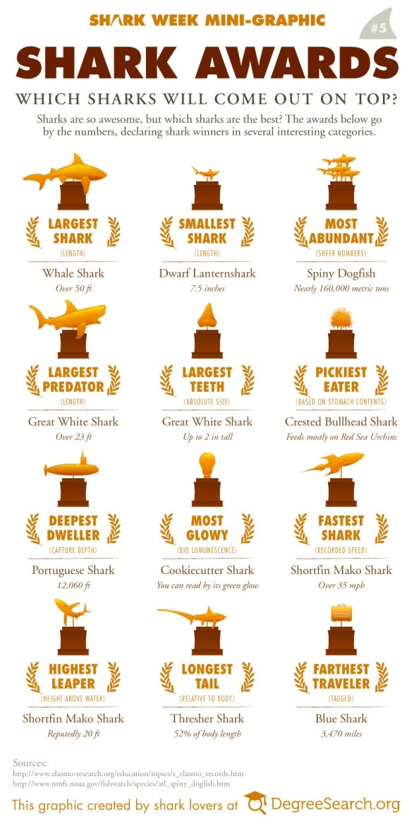 Shark Awards.... Pinning this to read to Elliot. He will love all these facts!