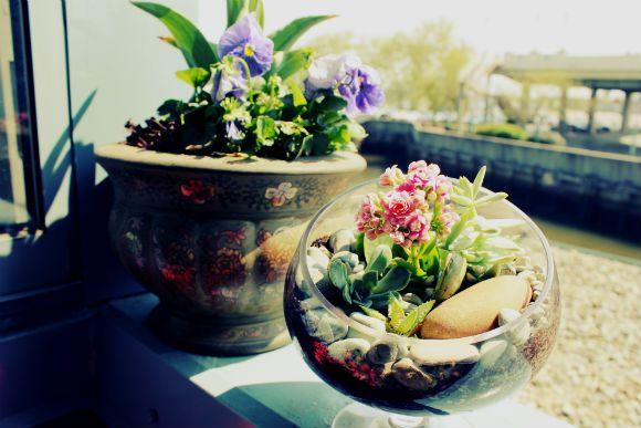 Decor Inspiration: Planting a Garden