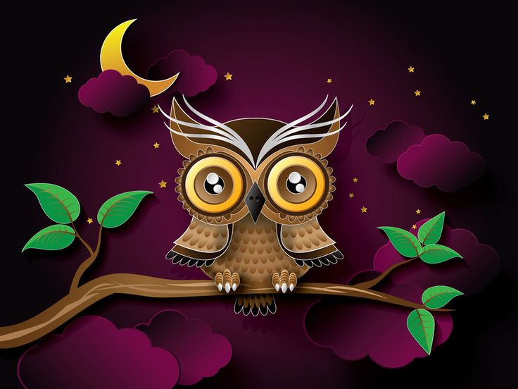 W3919 24inch x32 Owl Bird Art Branch Poster Canvas Prints Online