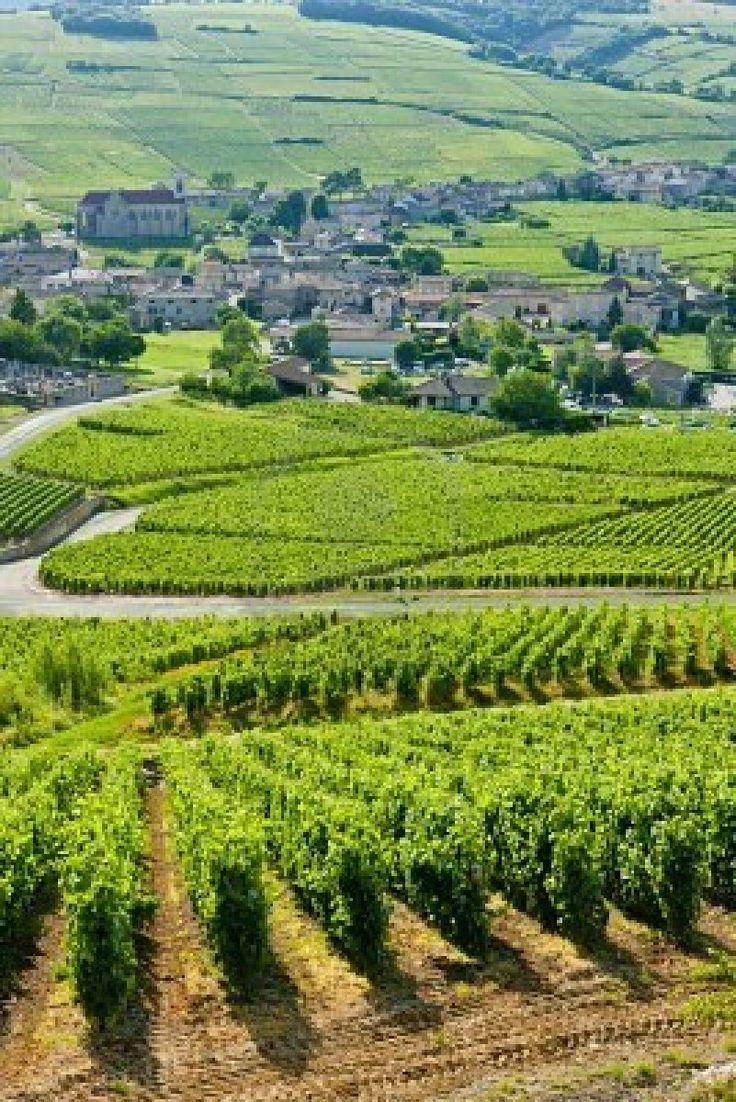 Burgundy. France