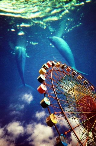 Imagine: The Roads, Double Exposure, Dreams, Most Popular, Dolphins, Magazines, Ferris Wheels, Film Photography Lomographi, Lomographi Photos