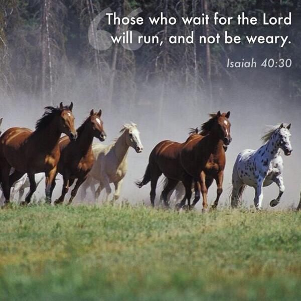 Isaiah 40:30. Wait for The Lord...you will run, and not be weary.