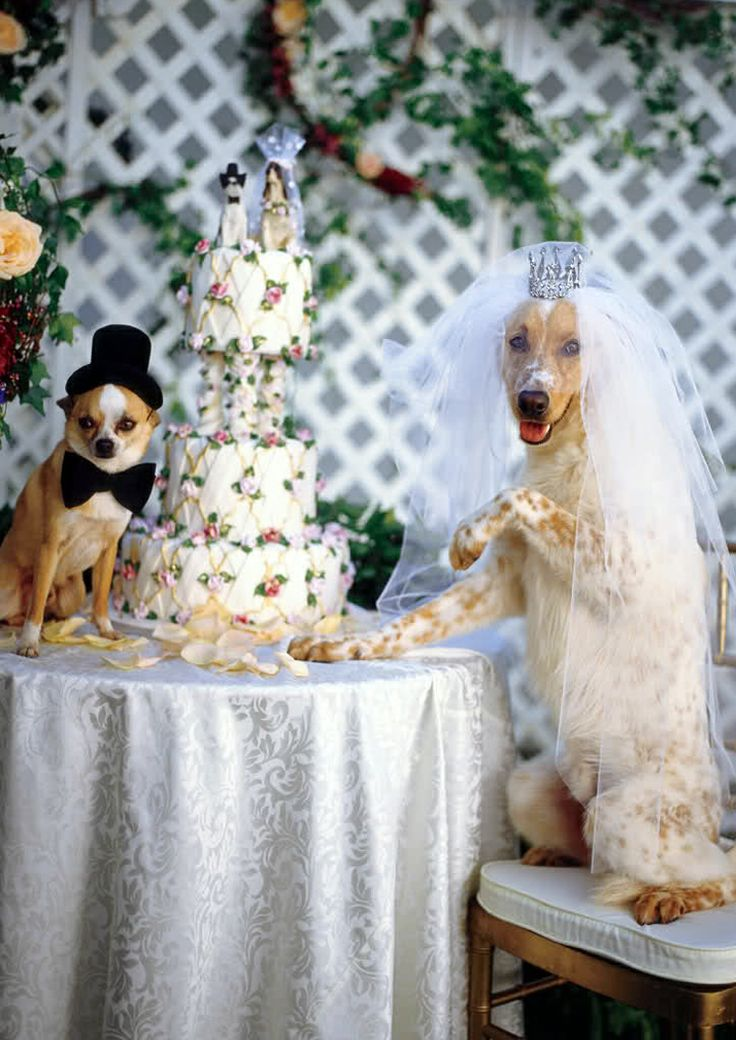 Wedding by Bruce Weber.