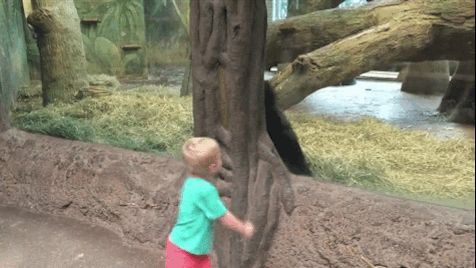 17 Times Toddlers Were The Opposite Of Terrible