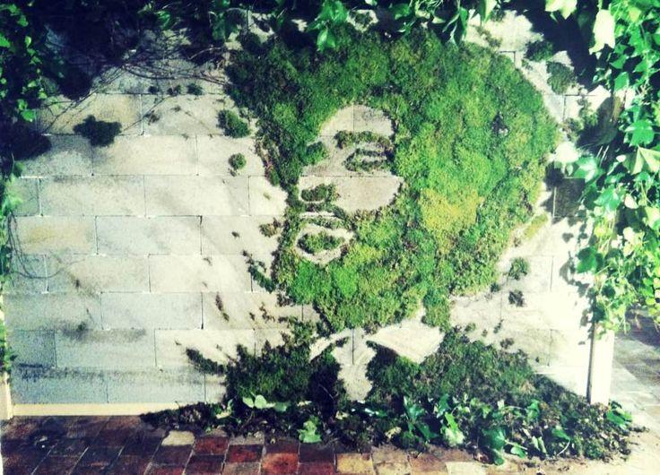 37 best Graffiti végétal idées et DIY images on Pinterest Moss - apprendre a peindre un mur
