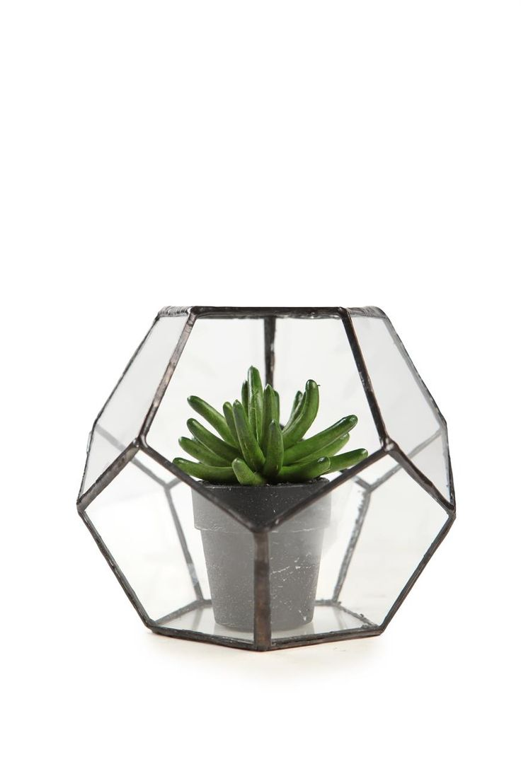 Size: 11cm H x 14cm W x 14cm W Materials: Glass Features/Inclusions: Fake plant Safety info: Hand wash only. Not microwave or dishwasher safe. Not food safe
