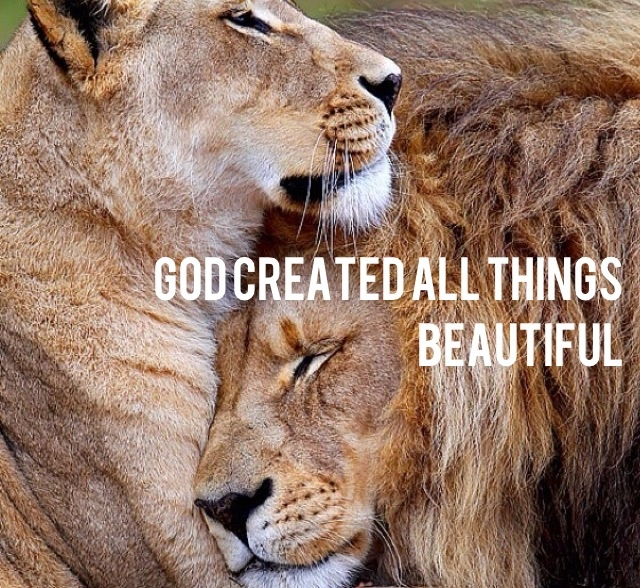 God created all things beautiful