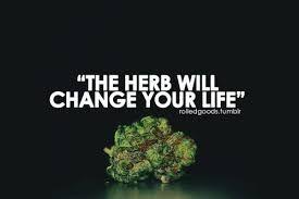 Top 10 reasons why we smoke weed