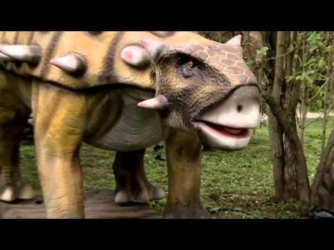 fajn park2 - YouTube