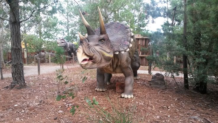 """Experience the dinosaurs up close and personal. The amazing animatronics make you feel like your in the land before time.Meet """"Wilson"""" the walking dinosaur, have a carriage ride around the Christmas Tree Farm, enjoy feeding """"Priscilla and Edward"""" resident geese, and """"Sammy"""" the duck ( 0.50cents per bag of bread to feed) and of coursemeet […]"""