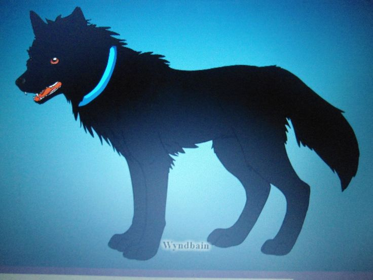 O lobo Haru que era o companheiro de Sakura no mundo humano, ficou com ela por praticamente 9 anos antes de morrer. Calaleão O Mundo Perdido