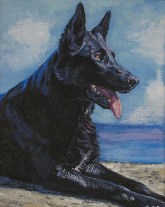 dutch shepherd dog paintings on canvas | ... German Shepherd art print CANVAS print of LA Shepard painting 11x14