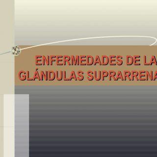 ENFERMEDADES DE LASENFERMEDADES DE LAS GLÁNDULAS SUPRARRENALESGLÁNDULAS SUPRARRENALES   Anatomía   Fisiología  4. Síndrome de Cushing Producción excesiv. http://slidehot.com/resources/enfermedad-glandulas-suprarenales-ok.63245/