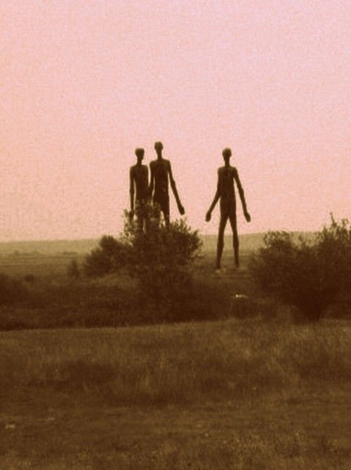 Tall aliens in a what looks like a desert or savannah!